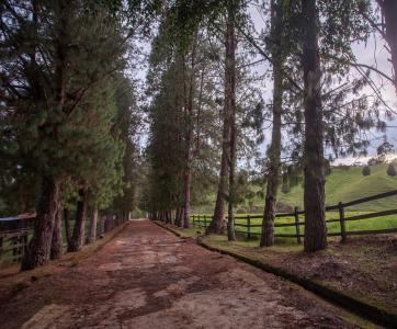 Essenza Reserva Campestre