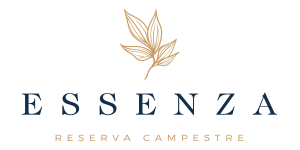 Logo essenzapng